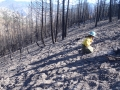 Hydrophobic Soils Testing -- High Intensity Burn Area in the Black Canyon Area