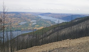 First Creek Fire burn area, Lake Chelan in background