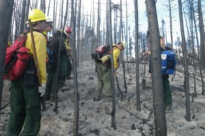 Field verification of soil burn severity