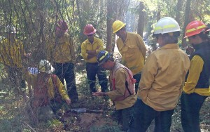 Team gathers to assess soil burn severity