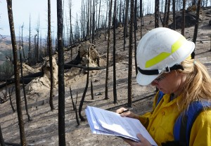 BAER team member assessing soil burn severity in Black Canyon burn area