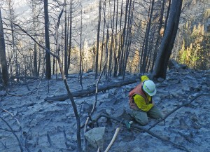 Assessing soil burn severity in the Black Canyon burn area